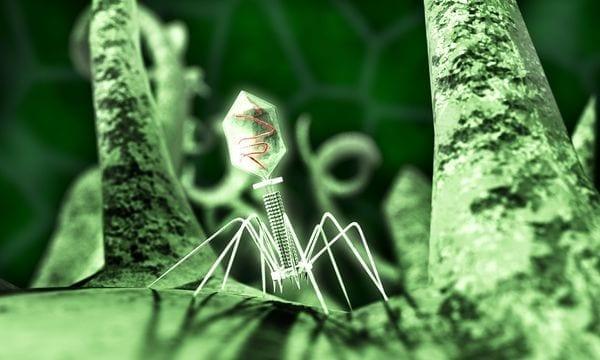 Virus en redes sociales