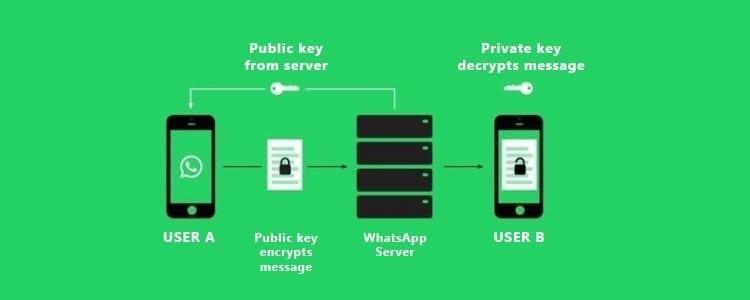 Cómo espiar conversaciones de WhatsApp