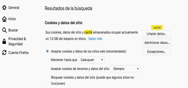 Limpiar datos del navegador