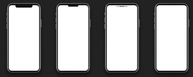 iPhone notch